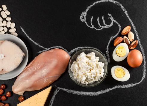 pentingnya makanan protein